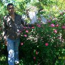 ���� VAD0N2008