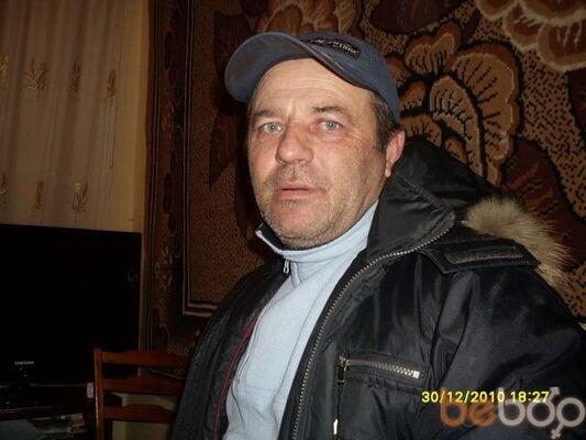 ���� ������� vivati, ������, �������, 46