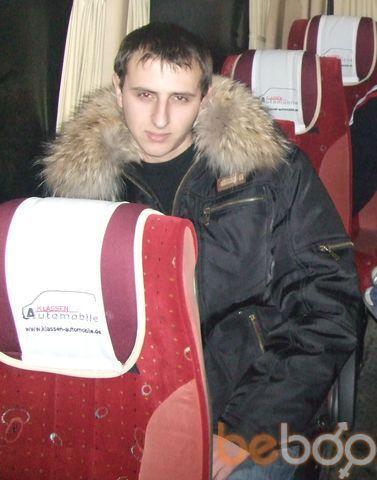 ���� ������� zoltan, �������, �������, 28