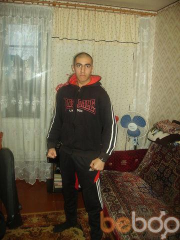 ���� ������� Nazik, �������, �������, 24
