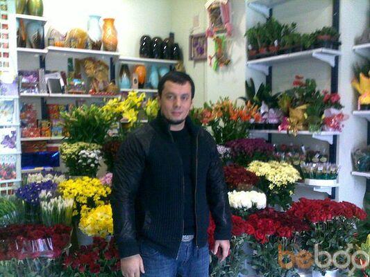 ���� ������� Avram, �������, �����������, 36