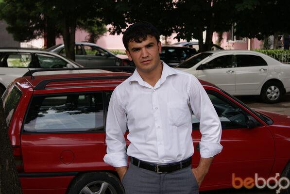 ���� ������� Odik, �������, �����������, 31