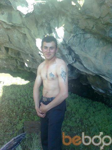 ���� ������� zubik, ������, �������, 29
