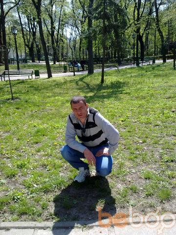 ���� ������� Vaseok, �������, �������, 33