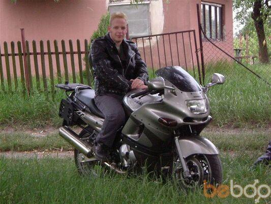 ���� ������� dominik, ���, �������, 36