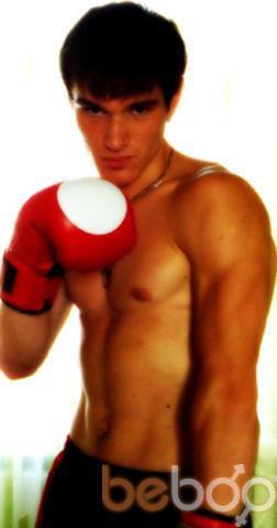 ���� ������� boxer, ������, �������, 28